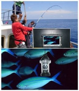 Best Underwater Fishing Camera